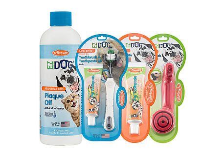 pet dental care made easy
