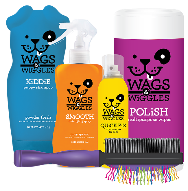 Wacky, colorful and fun, just like your pup!